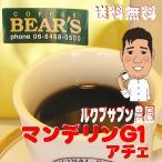 コーヒー豆マンデリン アチェ 3kg スペシャルティコーヒー コーヒー豆送料無料 人気に訳ありコーヒー