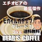 bears coffee 珈琲豆モカイルガチェフ 3kg コーヒー豆送料無料 珈琲豆半額以上 業務用コーヒー   オーガニックコーヒー 送料無料コーヒー