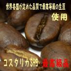 bears coffee コーヒー豆コスタリカ 100g オーガニックコーヒー 人気のコーヒー豆 コーヒー豆送料無料