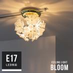 1灯 ブルームプチシーリングライト Bloom petitceilinglight キシマ kishima 照明