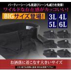 ワイシャツ 大きいサイズ 黒 3L 4L 5L 6L おしゃれ 結婚式 ボタンダウン ブラックシャツ メンズ カッターシャツ ドレスシャツ