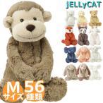 Yahoo!ビューティホリック【クーポンで最大8%オフ】 ジェリーキャット/JELLY CAT BASHFUL ぬいぐるみ  Mサイズ