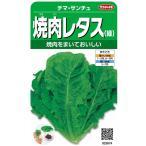 焼肉レタス(緑)