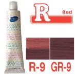 パイモア レッド R-9/GR-9 180g+2剤(6%)200ml