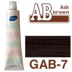パイモア アッシュブラウン GAB-7 180g+2剤(6%)200ml