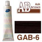 パイモア アッシュブラウン GAB-6 180g+2剤(6%)200ml