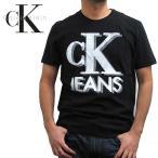 Calvin Klein カルバンクライン クラシック ロゴTシャツ 41AK945 (メール便対応)