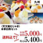 ショッピングアイスクリーム 送料無料 お中元 ギフト アイスクリーム 九州 本家白熊セット B-50_4977029011408_68