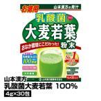 健康飲料 青汁 山本漢方 乳酸菌大麦若葉 4g×30包_4979654026758_84