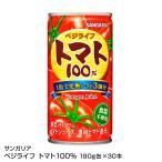 おいしいトマト100  190g 30本