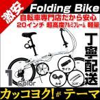 折りたたみ自転車 20インチ ライト付 BA-101WACHSEN 折り畳み自転車