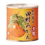 紀州有田 田村みかん缶詰