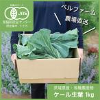 ケール生葉 自社農場産ケール 国産ケール原種 農薬化学肥料不使用 1kg入 農場直送 野菜の王様