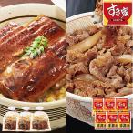 すき家 牛丼の具 国産 うなぎ蒲焼 6人前 セット 食品 冷凍食品 おかず