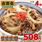 吉野家 牛丼 の具 冷凍120g×4袋 並盛 惣菜 お弁当