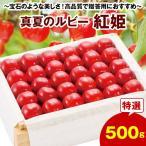 お中元 御中元 フルーツ 果物 さくらんぼ ギフト 送料無料 のし プレゼント お取り寄せ 真夏のルビー 紅姫 500g 7月下旬より順次発送