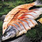 お歳暮 御歳暮 ギフト 贈り物 送料無料 魚介 海鮮 魚 鮭 宗谷・オホーツク産 新巻鮭 寒風仕上げ 姿切身 2.6kg