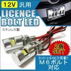 LED ナンバーボルト ナンバー灯 ライセンスランプ SMD ステンレス シルバー 2個セット