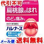 【第3類医薬品】  小林製薬 ハレナース 9包 ゆうメール選択で送料80円