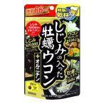 井藤漢方 しじみの入った牡蠣ウコン+オルニチン 徳用264粒 ゆうメール選択で送料80円