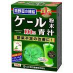 山本漢方 ケール粉末100% 青汁 85g