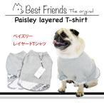 ペイズリーレイヤードTシャツ / 犬 服 犬の服 ドッグウェア 洋服 おしゃれ 切り返し コットン 綿100%