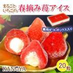 ショッピングアイスクリーム KANOYA/春摘み苺アイスクリーム(20粒入) 送料無料  (中元/歳暮/母の日/内祝/ギフト/返礼)