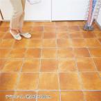 掃除がしやすい 玄関シート/フロアシート 〔約182×200