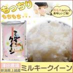 〔平成28年産〕 澤田農場の新潟県上越産ミルキークイーン白米 10kg(5kg×2袋) 送料無料
