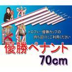 ペナント(無地)優勝者リボン 50mm×700mm(70cm)