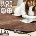 ホットカーペット 1.5畳 本体 電気カーペット 1.5畳用 カーペット 125×180cm 収納 折り畳み ダニ退治機能(あすつく)