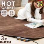 ホットカーペット 3畳 本体 電気カーペット 3畳用 カーペット 195cm×235cm 収納 折り畳み ダニ退治機能 テクノス