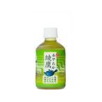 コカ・コーラ社製品 綾鷹 280mlPET 2ケース 48本 ペットボトル 緑茶 ※数量は48本単位でご注文下さい