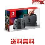 Nintendo Switch 本体  ニンテンドースイッチ   Joy-Con  L     R  グレー   ニンテンドーeショップでつかえるニンテンドープリペイド番号3000円分