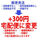 宅配送料 郵パケ無料/郵便定形外無料 を宅配便に変更します/300円