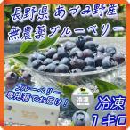 ブルーベリー 冷凍 1kg 無農薬 国産 長野県 安曇野 500g × 2パック 送料無料 百笑