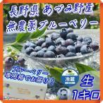 ブルーベリー 1kg 無農薬 国産 生 長野県 安曇野 500g × 2パック 送料無料 百笑