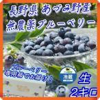 ブルーベリー 2kg 生 無農薬 国産 長野県 安曇野 500g × 4パック 送料無料 百笑