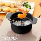 天ぷら鍋 22cm 小さい ミニミニ 天ぷら 揚げ物 ヘルシー ガス IH 対応 日本製 送料無料
