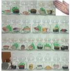 母の日のプレゼントにおすすめ 人気のミニチュアボトルセット 食品サンプル ガチャガチャおもちゃ 28種類 超リアル お寿司