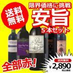ショッピング赤 送料無料 限界価格に挑戦 全部赤 安旨5本ワインセット 赤5本