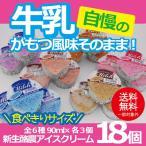 お歳暮 御歳暮 アイス ice アイスクリーム ギフト gift 送料無料 新生酪農アイスクリーム18個セット 冷凍便