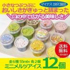 お歳暮 御歳暮 アイス ice アイスクリーム ギフト gift 送料無料 ミニメルツアイス12個セット 詰め合わせ セット 冷凍便