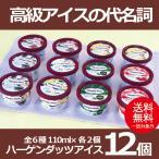 お歳暮 御歳暮 アイス ice アイスクリーム ギフト gift 送料無料 ハーゲンダッツアイス12個セット 冷凍便
