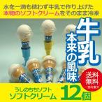 お歳暮 御歳暮 アイス ice アイスクリーム ギフト gift 送料無料 うしのちちソフト10個セット 冷凍便