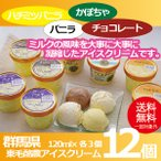 お中元 御中元 アイス ice アイスクリーム ギフト gift 送料無料 東毛酪農アイスクリーム12個セット 冷凍便