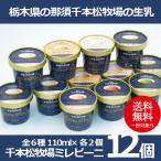 お中元 御中元 アイス ice アイスクリーム ギフト gift 送料無料 千本松牧場ミレピーニ12個セット 冷凍便