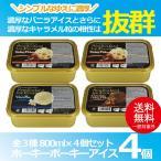 お歳暮 御歳暮 アイス ice アイスクリーム ギフト gift 大量 送料無料 ホーキーポーキーアイス4個セット 冷凍便