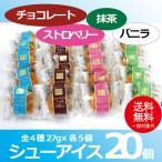 お中元 御中元 アイス ice アイスクリーム ギフト gift 送料無料 シューアイス20個セット 冷凍便