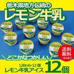 お歳暮 御歳暮 アイス ice アイスクリーム ギフト gift 送料無料 レモン牛乳アイス12個セット 冷凍便